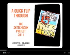 Video :: Sketchbook Project Quick Flipthrough